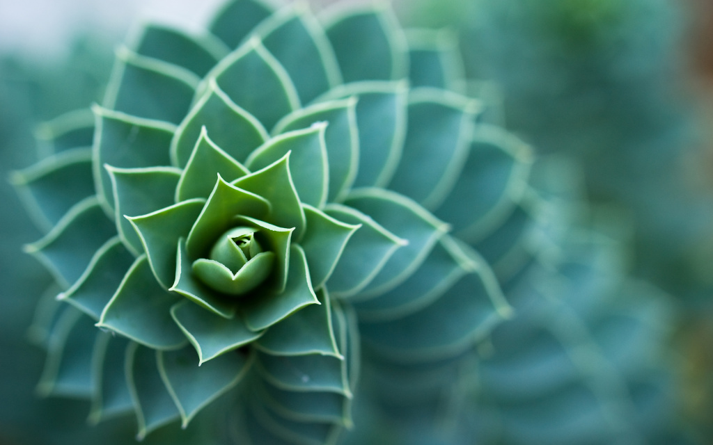 Bokeh Spiral HD Wallpaper