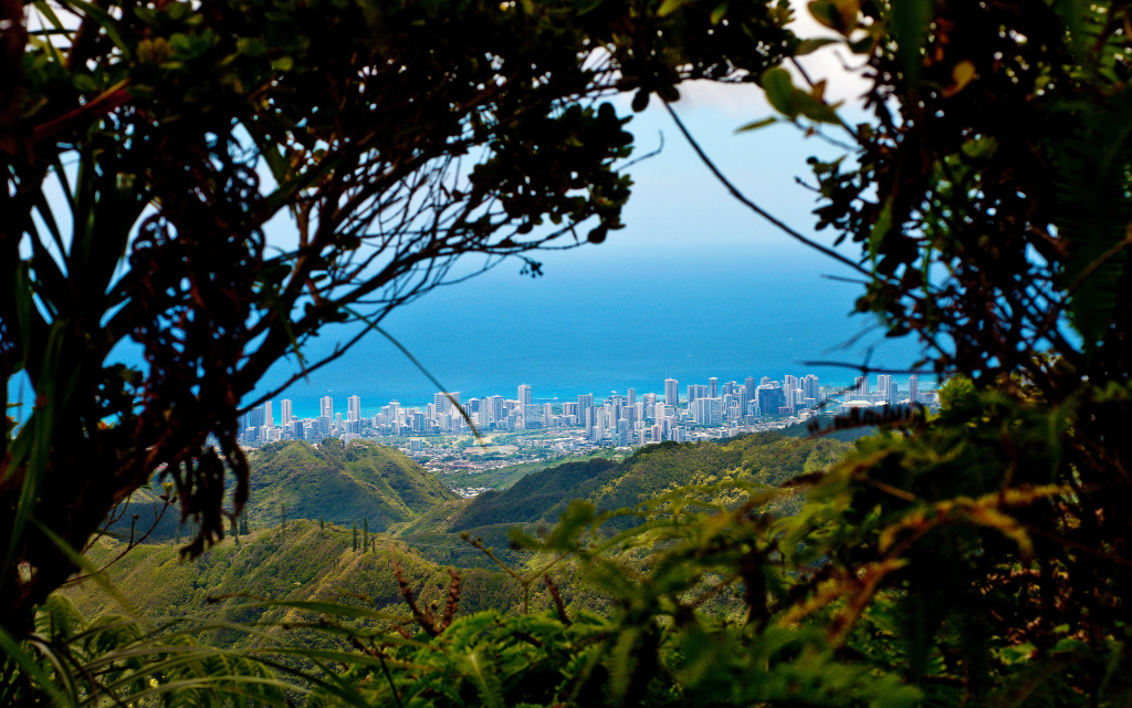 Honolulu From The Hawaii Loa Hike HD Wallpaper