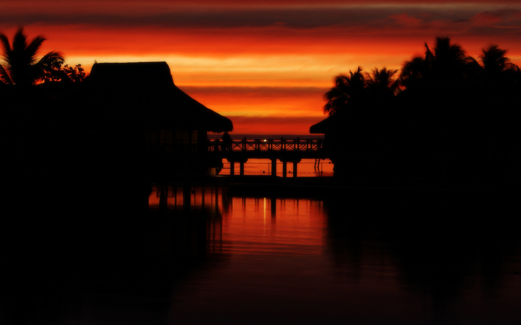 Tropical Sunset HD Wallpaper