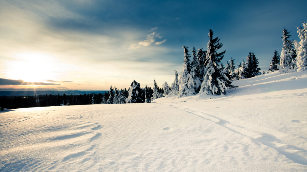 Winter Landscape HD Wallpaper