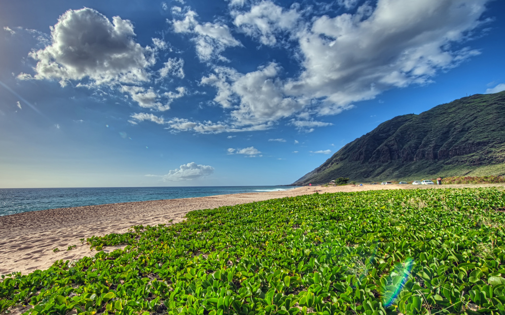 Kaena Point HDR HD Wallpaper